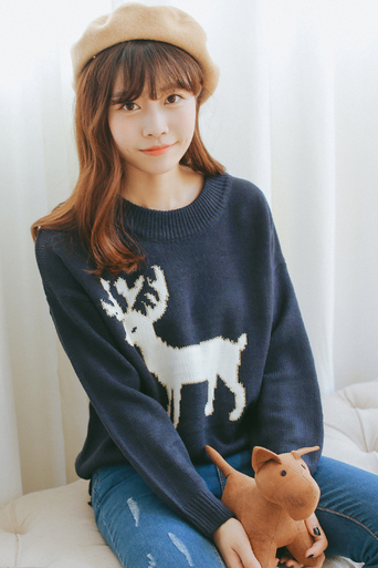 Cartoon fawn bump color round neck sweaters